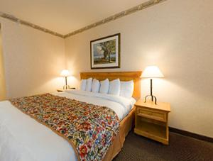 Country Inn & Suites Eagan photo