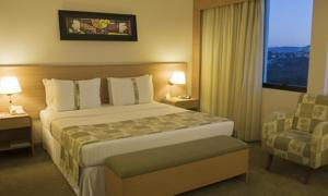 Holiday Inn Parque Anhembi photo