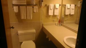 Quality Inn and Suites Rochester photo
