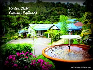 Marina Chalet and Homestay