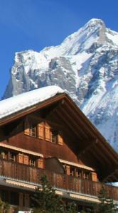Aparthotel Eiger photo