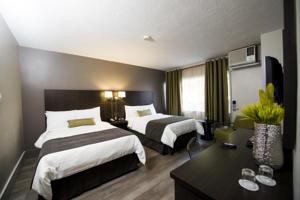 v hotel suites in moncton canada best rates. Black Bedroom Furniture Sets. Home Design Ideas