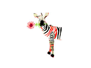 Flower´s Boardinghouse Mitte photo