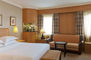 Sheraton Ankara Hotel & Convention Center photo
