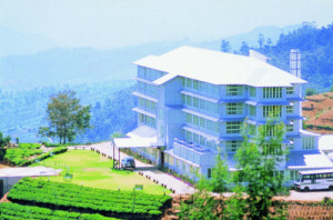 Heritance Tea Factory photo