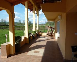 Freiburg Villa villa freiburg stalpeni in stilpeni romania best rates guaranteed