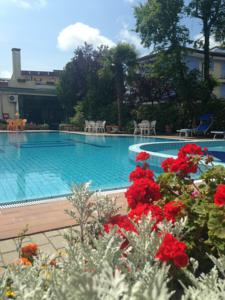 Hotel Centrale A Eraclea Mare Italy Lets Book Hotel