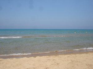 рассчитать брати аркуди отзовы о пляже Ольвия устойчив болезням