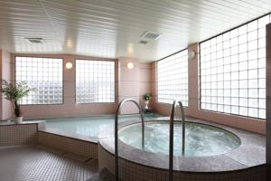 Hakuba Springs Hotel photo