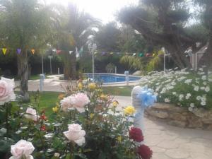 Casa los jardines de lola in elche spain best rates guaranteed lets book hotel - Los jardines de lola ...