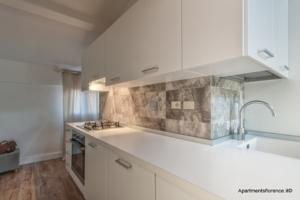 Apartments Florence Accademia Luxury Loft