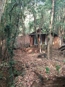 Khushi Farms Jungle Resort in Gokarna, India - Lets Book Hotel