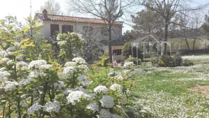 Bed And Breakfast Casale Isorella