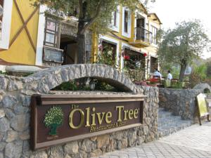 The Olive Tree Studios photo