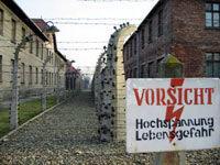 Auschwitz-Birkenau Museum Half-Day Trip from Krakow